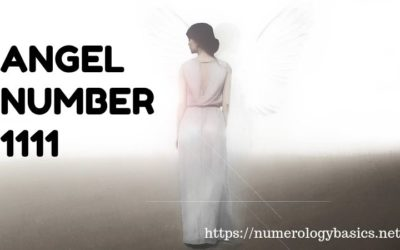 Angel Number 1111 Meaning: A New Beginnings