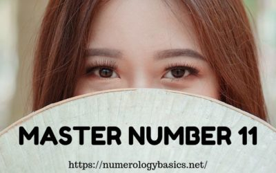 MASTER NUMBER 11 DECODED