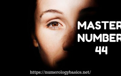 MASTER NUMBER 44 DECODED