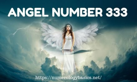 What Are My Angel Numbers: What do they tell? - Numerology