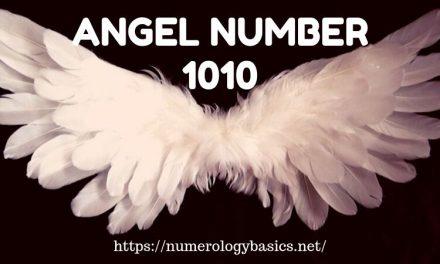 Numerology 77: Angel Number Meaning - Numerology Basics
