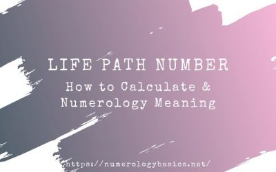 Life Path Number: Calculation & Numerology Meaning
