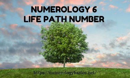 NUMEROLOGY 11: LIFE PATH NUMBER 11 - Numerology Basics