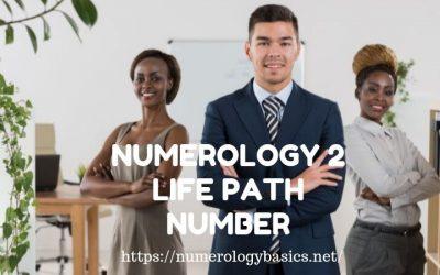 NUMEROLOGY 2: LIFE PATH NUMBER 2 REVELED