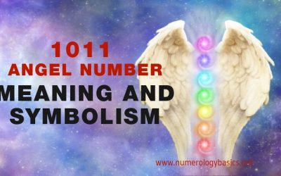 ANGEL NUMBER 1011