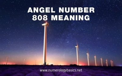 808 Meaning: 5 Reasons Why you See Angel Number 808