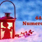 44 numerology
